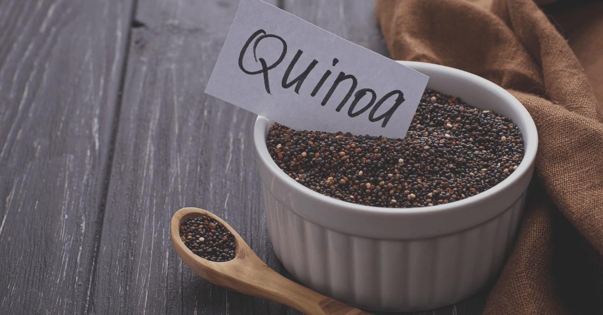 Quinoa Plant Based Protein Vegan Protein